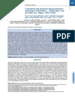 BIOETANOL - ESPARRAGO.pdf