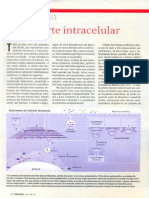 Transporte.intracelular.nobel.2013.1