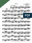 Johann Sebastian Bach  Suite No 1 for Viola