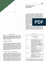 Configuración Profesional - H. Mintzberg - Mintzberg y la Dirección