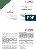 Guías Preparación Examen Simulación 1er Sem BADI