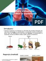 Evoluția Sistemului Respirator La Vertebrate
