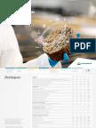 Relatorio Sustentabilidade Petrobras 2017pdf