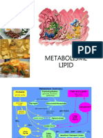2 Metabolisme Lipid Ringkas