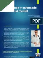Cannabis y Enfermería en Salud Mental Parte Fran