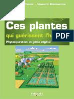 Ces Plantes Qui Guérissent l'Habitat _ Phytoépuration Et Génie Végétal
