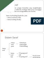 Fisiologi Sistem Saraf