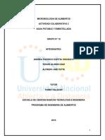 Colaborativo2 Microbiologia de Alimentos 211624_10