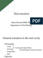 1 Oral Sensation