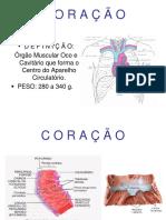Aula Sistema Cardiovascular