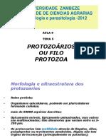 AULA 9 protozoarios 2012.ppt