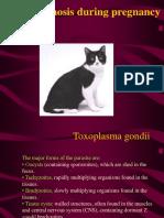 OB Toxoplasmosis Pregnancy Kuliah