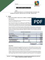 Resumen Pte_Suro