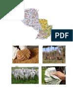 Actividades Economicas Del Paraguay