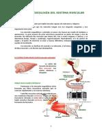 fisiologiaa muscular.pdf