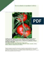 Cultura Tomatelor in Solarii Si Rasadnite