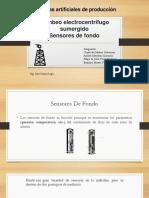 ESP (Sensores de Fondo)