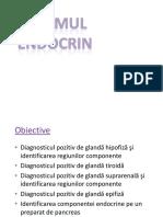 02.Glande Endocrine 2018 Site.pptx