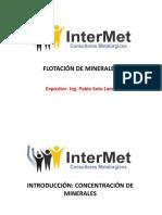 Flotación de Minerales.pdf
