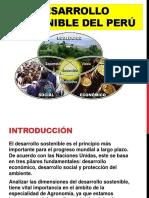 DIAPOSITIVAS_ANTROPOLOGIA.pptx