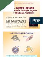 Defensa Inmunitaria