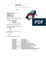 Examen Medula Espinal Nervioso