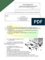 B.2 - Teste Diagnóstico -  Fluxo de energia e ciclo da matéria (3).docx