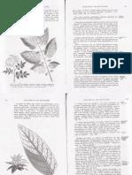 A Moderna Agricultura Intensiva Volume2 p4