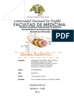 Histología IV Unidad-sistema Digestivo i