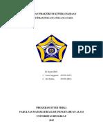 LAPORAN PRAKTIKUM KEWIRAUSAHAAN.docx