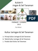 Lecture 9  Kultur Tanaman.pptx