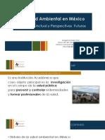 salud ambiental de mexico.pdf