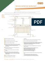 FACTURA PROFORMA.pdf