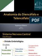 Anatomia Diencefalo e Telencefalo INTA 05.2015 Final