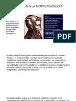 Diapositivas 1 Morfo [Autoguardado]
