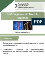 Embriologia Do Sistema Nervoso - Medula e Sna