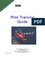 480 Pilot Training.pdf