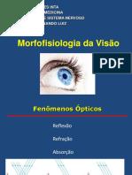 Morfofisiologia Da Visao