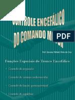 Controle Motor Pelo Encéfalo 2017.2