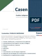 Casen2013_Pueblos_Indigenas_13mar15_publicacion.pdf