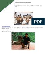 Grupos Etnicos de Bolivia 36