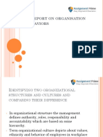 A Report on Structures and Cultures of Different Organization.