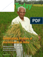 International Rice Research Institute Magazine