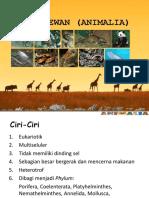 Bab 8 Animalia Porifera Coelenterata