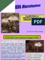Genero Macrolepiota Velasco Revisado-2016