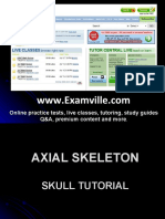 Axial Skeleton Tutorial SKULL