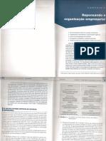 Chiavenato-Repensando a Organização Empresarial