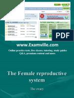 Female Reproductive