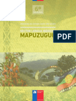 Prog de Estud 6 Basico Mapuzugun
