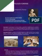 Arqueología forense